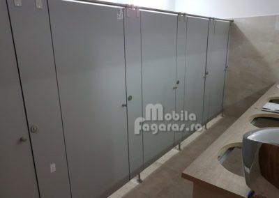 compartimentari-sanitare-1