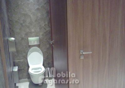 compartimentari-sanitare-14